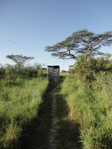 Africa 2013 027