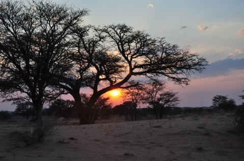 African sunset 1