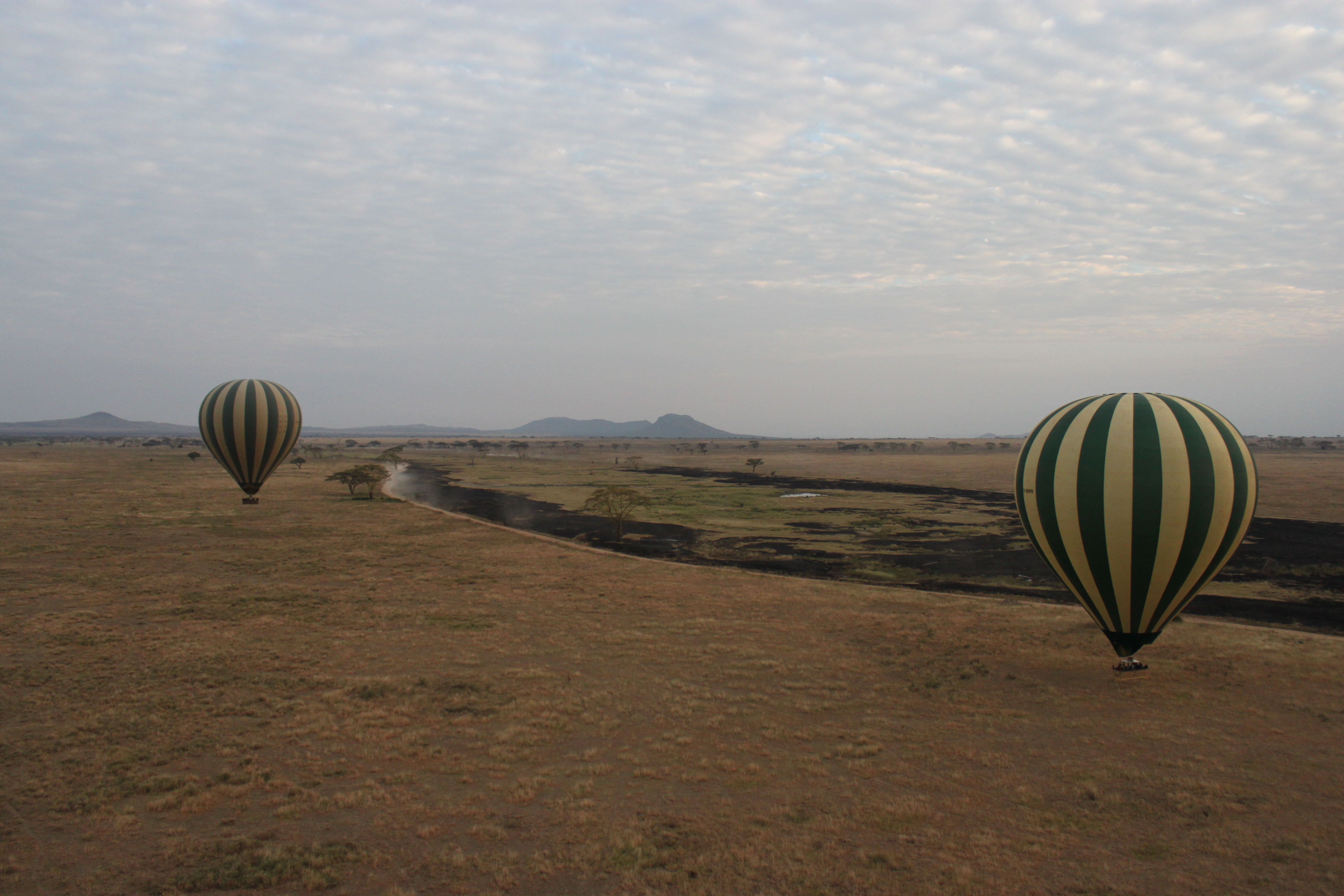 Ive Been Thinking About Balloons Lately Because One Of Sbss Pilots And A Dear Friend Of The Serengeti Lion Project Snapsserengeti Jason Adams