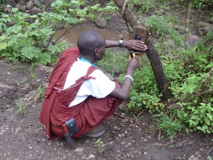 Roimen setting a camera-trap